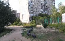 """Горловка """"затухла"""": мрачное видео из города показало реальную ситуацию в """"ДНР"""" – это настоящее лицо России"""