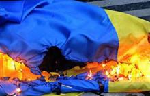 Под Луганском местный житель поджег флаг Украины: злоумышленника задержала полиция