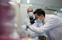 Reuters: Антитела эффективно борются с новым вирусом - китайские ученые
