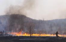 Медведев нелепо оправдался за сгоревшие 3 миллиона гектаров леса в Сибири