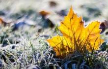 Падение температуры, дождь, снег и порывы ветра до 18 м/с: озвучен холодный прогноз погоды для Украины