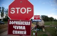 Официально: Аксенов ввел в Крыму режим чрезвычайной ситуации из-за вспышки африканской чумы