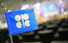 Страны ОПЕК+ с Россией просят США сократить добычу нефти - Reuters