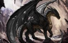 В Йемене местные жители обнаружили в горах мертвого дракона – небывалые кадры