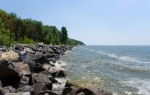 Природная катастрофа подошла к домам украинцев: Кременчугское водохранилище может привести к экологическому бедствию