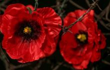 """Порошенко о 22 июня 1941 года: """"На нашей земле столкнулись два кровавых тоталитарных режима"""""""
