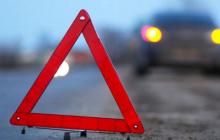 ДТП с пожаром под Львовом: причиной стал пролетающий аист