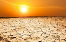 Ученые рассказали, как жара убьет людей: умрут все