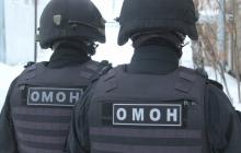 В России сотрудники ОМОНа умудрились проехать 130 километров несколькими авто ради пол-ящика мандаринов от МВД