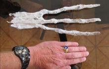 Уфолог Пол Меркси нашел на Марсе ампутированную конечность пришельца