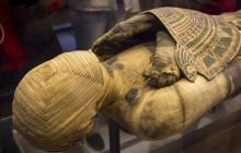 Древнее погребение в Египте на берегу Нила: ученые готовятся к сенсациям