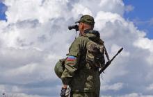 """В """"ЛНР"""" стая волков чуть не загрызла боевиков на позиции - гражданские назвали причину"""