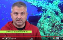"""""""Кур*а, начни жить со своим мужем"""", - Скрыпин резко обратился к Тимошенко после скандала"""