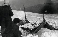 Тайна перевала Дятлова: экспедиция нашла кедр, на котором были обнаружены тела погибших дятловцев с обоженными пятками