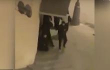 Момент ликвидации Манюрова Москве, последние секунды жизни стрелка попали на видео