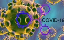 COVID-19 может помочь ученым в борьбе с онкологией