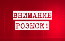 Под Киевом вторые сутки ищут пропавшую Настю Серик: у 12-летней девочки есть особые приметы - фото