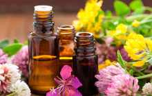 Ароматерапия – искусство лечения болезней: воздействие запаха на организм человека