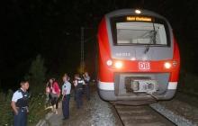 """17-летний беженец из Афганистана с криками """"Аллах акбар"""" устроил кровавое побоище в поезде Германии"""