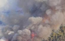 Чернобыль пылает: появились последние данные с объятой пожаром зоны отчуждения
