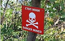 Лисянский рассказал, кого следует винить в страшной трагедии с детьми, подорвавшимися на мине в серой зоне