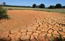 Европа огласила чрезвычайное климатическое положение: Весь мир в опасности