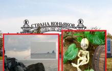 В виноградниках Коктебеля сторож нашел спящего пришельца, который искал силу в вулкане Кара-Даг