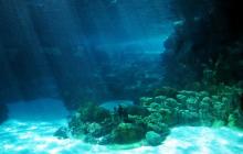 Ученые нашли древнюю дорогу на дне океана, в это невозможно поверить