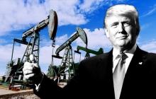 """Трамп требует еще большего снижения цен на нефть и """"давит"""" на ОПЕК - руководство РФ в бешенстве"""
