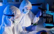 """В США распространяется вирус """"кроличья Эбола"""", появившийся 35 лет назад в Китае"""