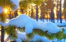 Когда в Украине ударят самые сильные морозы до -15°: прогноз синоптиков на пик похолодания - даты и карты