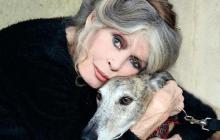 Актриса Брижит Бардо заступилась за животных, но получила проблемы с законом