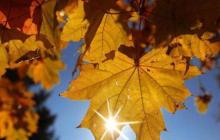 Много дождей и первые заморозки: прогноз погоды до конца осени - 2020