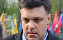 Геращенко: Тягнибок сядет, если в МВД докажут его подстрекательства к применению гранат на митинге
