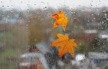Прогноз погоды в Украине на начало сентября: осень покажет свой характер