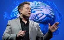 Восстановит зрение и слух: компания Маска готовится вживить чип Neuralink в мозг человека