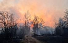 Ситуация с пожаром в зоне ЧАЭС критическая, ветер подул в сторону России