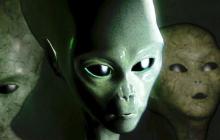 Тело пришельца показали на фото: маленькое тело и огромная голова