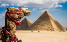 Путешествуем без проблем: выгодный мобильный интернет в Египте