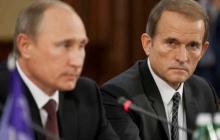 """Медведчук так """"рвал"""" Зеленского, что неожиданно воспротивился Путину: громкие подробности"""