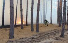 Луганская область снова в огне: пламя подбирается к передовой, экстренно эвакуируют жителей сел