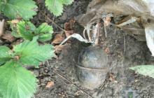 Собирала клубнику, а нашла гранату - подробности любопытных находок жителей Донетчины