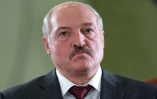 Литва ввела санкции против Лукашенко и более 100 чиновников Беларуси