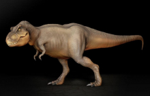Сиамраптор – новый вид хищного динозавра, найденного палеонтологами на юге Азии