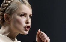 Уколов нашел явные параллели в намерениях Тимошенко с решениями вождя Третьего рейха - Конституция в опасности