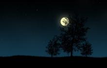 Астрофизики о самой долгой ночи в декабре: Отключится электроника, и самолеты упадут на землю