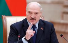 """Лукашенко сделал заявление о Януковиче, выставив его """"жертвой"""""""