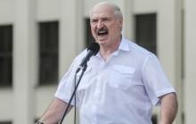Литва объявила Лукашенко персоной нон грата – Батьке запрещен въезд в страну