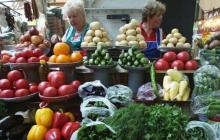 Цены на овощи в Украине резко рухнули - причина аномалии, что будет дальше