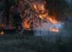 Пожар на Луганщине: видео, как военные ООС вместе с пожарными пытаются сдержать распространение огня